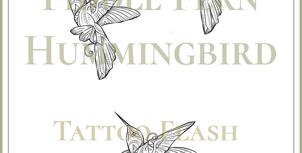 HUMMINGBIRD 8 | Fiddle Fern