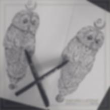 Flash Square   Owl 7.jpg