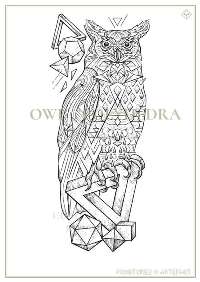 CGS-Owl-Polyhedra-wb.jpg