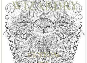 CUSTOM INK | Wizardry
