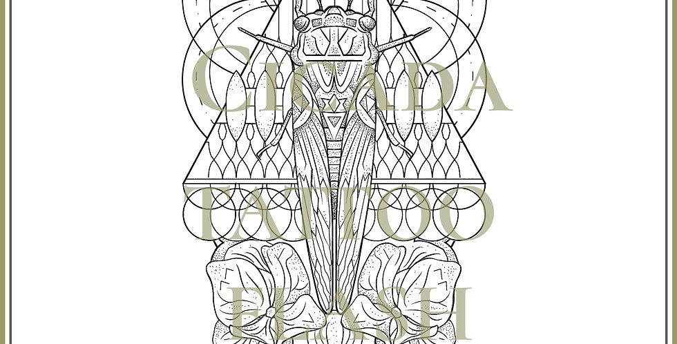 CICADA 1   Hydrangea