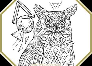 CUSTOM INK  Owl Polyhedra