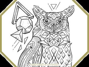 CUSTOM INK |Owl Polyhedra