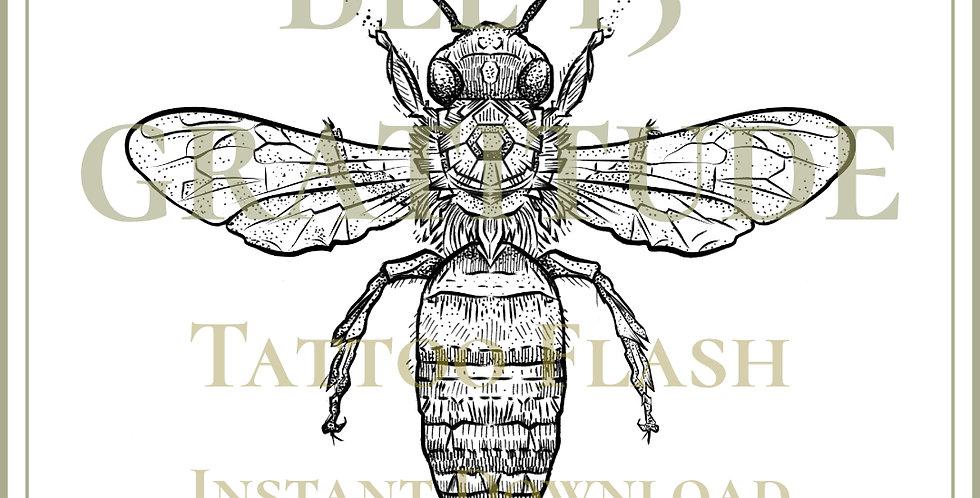 BEE 15 | Gratitude