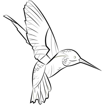 Hummingbird Vector Icon | Symbolic Meaning in Art | Puncture Artefact