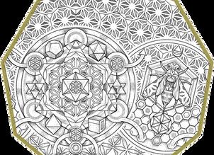 CUSTOM INK |Asanoha Bee