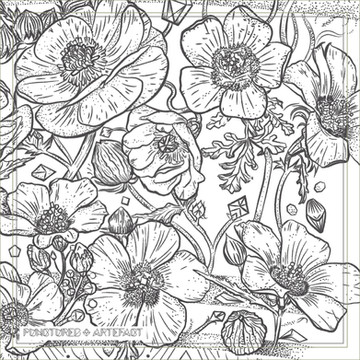 Botanical Bands InsSq 2.jpg