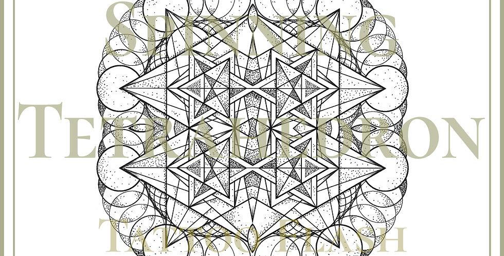 SACRED 45   Spinning Tetrahedron