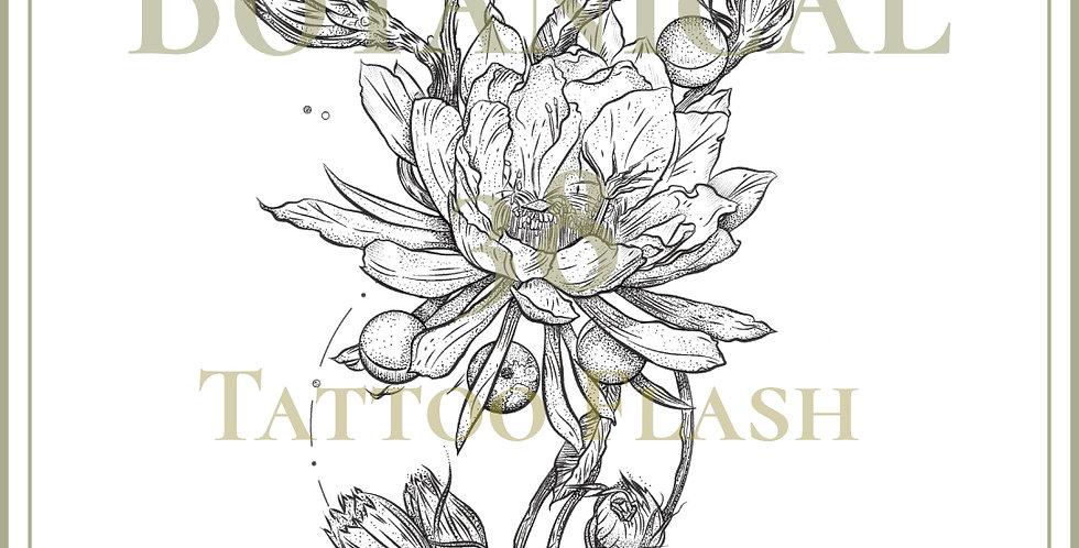 BOTANICAL 38 | Moon Epiphyllum