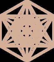 Icosahedron Coral.png