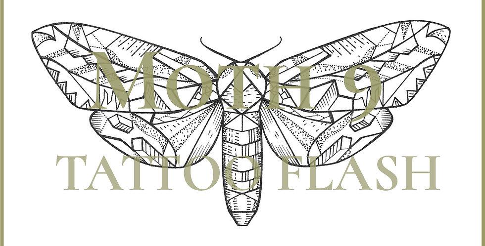 MOTH 9 | Rectangle Hawk