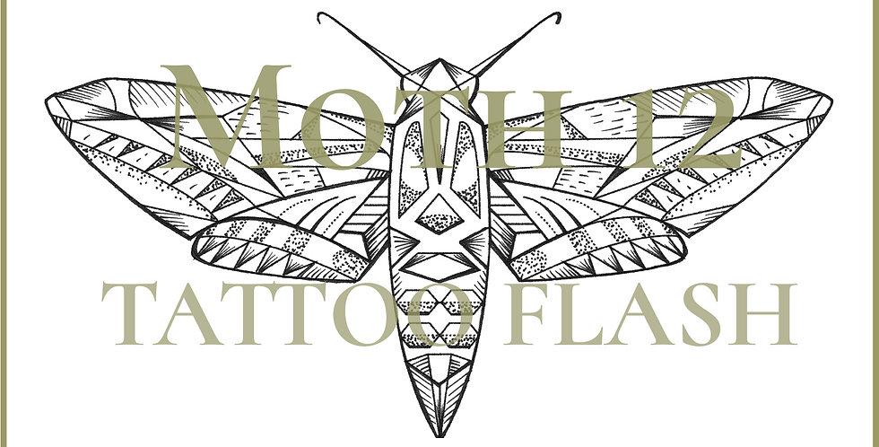 MOTH 12   Hexagon Hawk