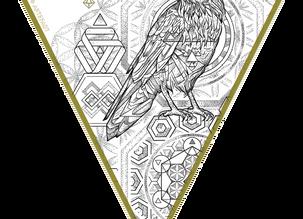 CUSTOM INK | Infinity Raven