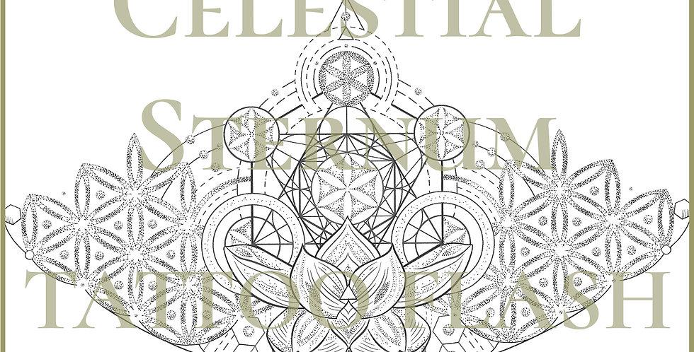 SACRED 18 | Celestial Sternum
