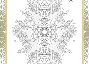 GRAPHICS | Alchemy Perfume