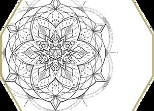 CUSTOM INK   Lily Mandala