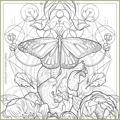 CUSTOM INK | Sacred Butterfly | Archive
