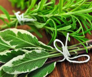Tuscan Herb