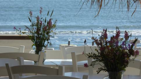 Restaurace Malibu