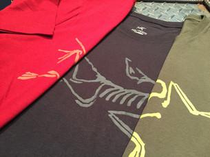 夏の定番 人気のARC'TERYX Tシャツ。