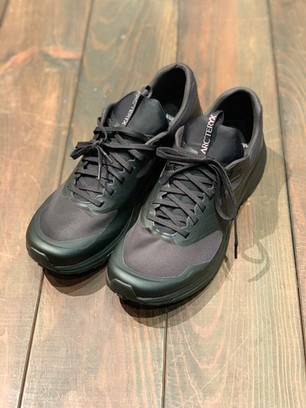 快適でさらに軽量に〜Norvan LD2 GTX Shoes〜