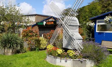 wpc flowers windmill.jpg