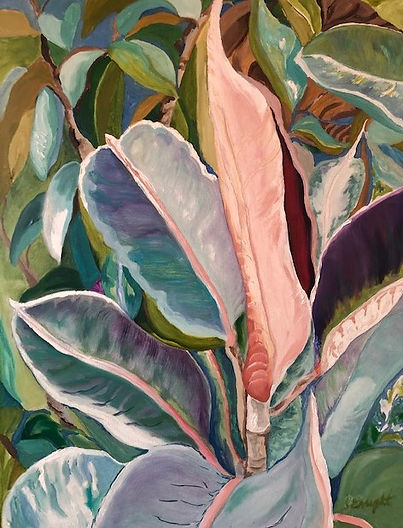 another Rubber Tree Plant 18x24 oil on canvas.jpeg
