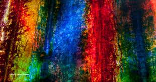 Lumière et mouvement dans la couleur