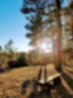 Memory Bench sunset.jpg