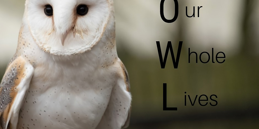 OWL Facilitator Training