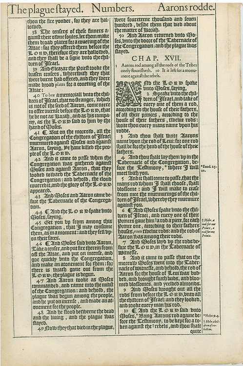 Numbers 16:19b-16:37a - 16:37b-17:10a