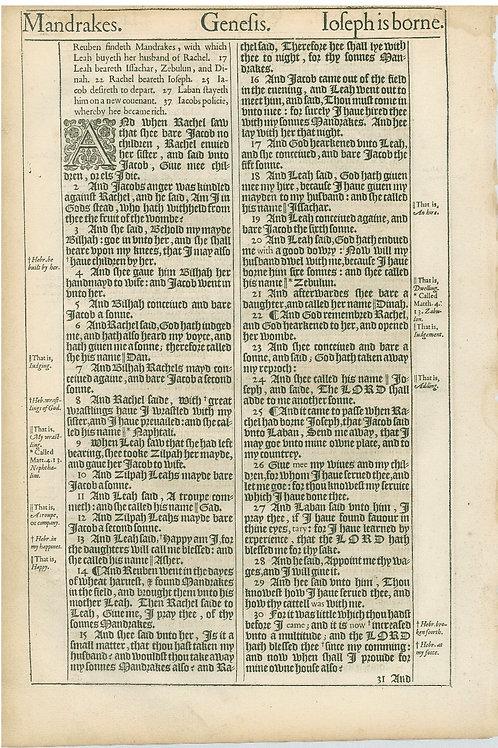 Genesis 29:7b--30:1a - 30:1b-30:30