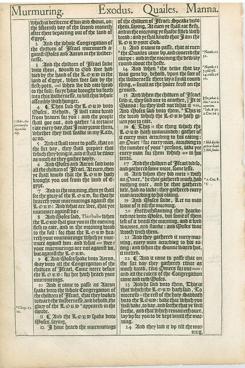 Exodus 15:4-16:1a - 16:1b-16:24a