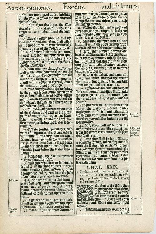 Exodus 27:20b-28:23a - 28:23b-29:2a