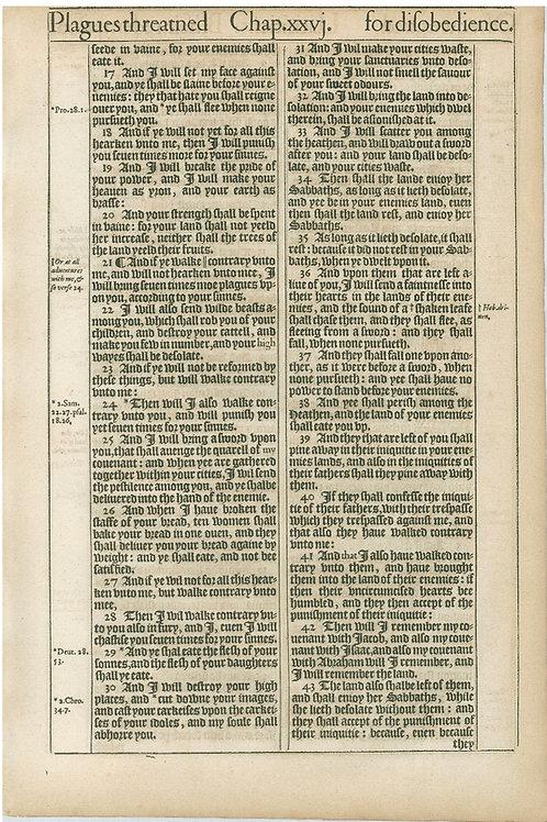Leviticus 26:16b-26:43a - 26:43b-27:22a