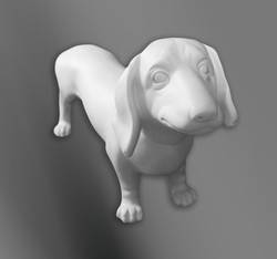 MED DOg 1
