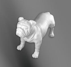Big DOg 2