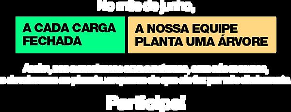 sistemática.png