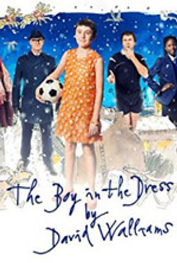Boy in the Dress Poster