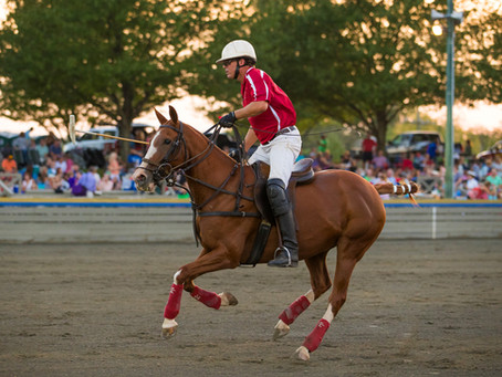 Blue Valley Vineyard and Winery - New Presenting Sponsor of Twilight Polo at Great Meadow