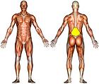 Lumbar Stretch
