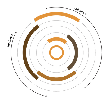 diagrama 2020 estrutura-03.png