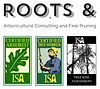 Roots And.jpg