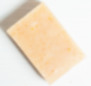 Website-Shampoo-Bar.png