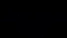 Northern Vibe Logo.png