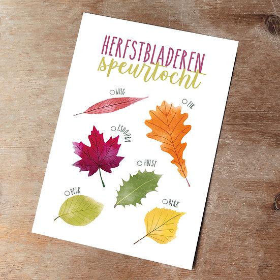Herfstbladeren speurtocht en 'Wist-je-dat?' kaart