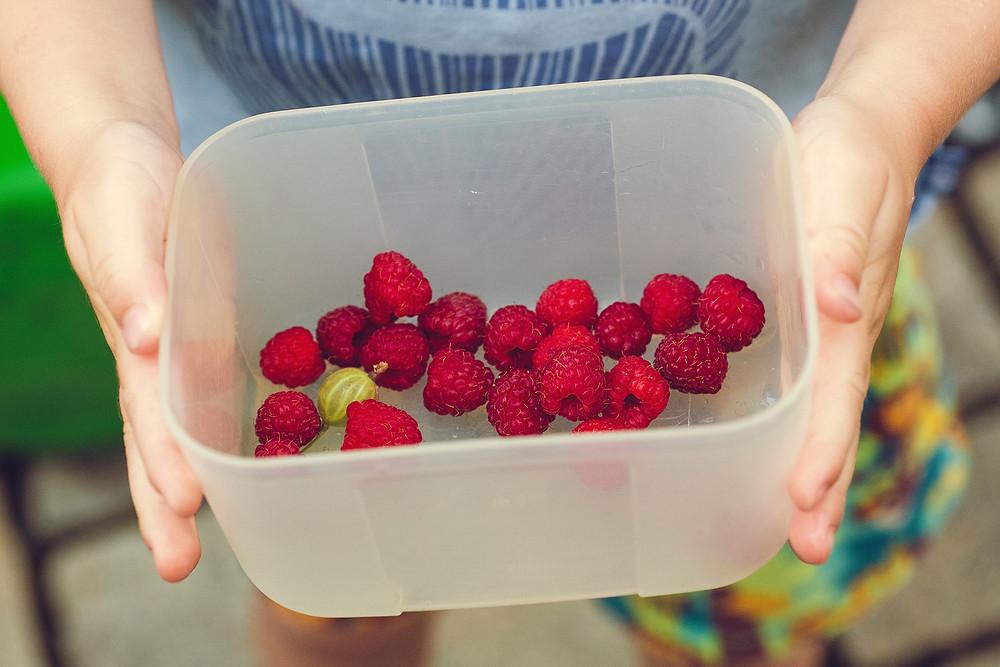 waterspelletje: zomers fruit proeven met kinderen