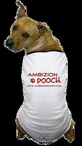 pooch_tshirt.png