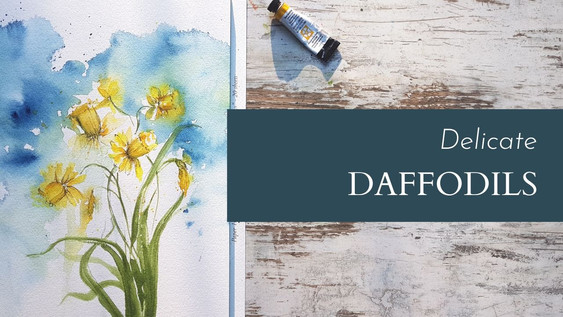 Delicate Daffies
