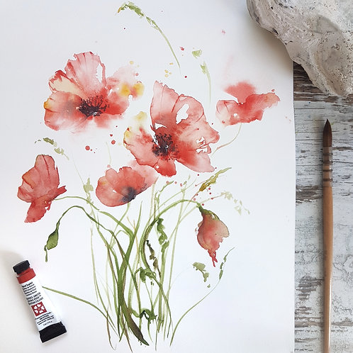 Loose Poppies